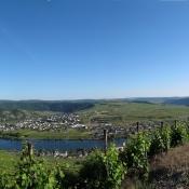 Panorama von Mosel und Serpentinen