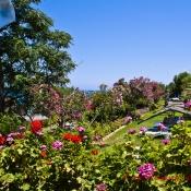 Ein kunterbunter Hotelgarten